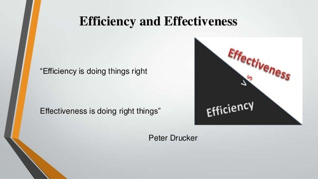 efficiency and effectiveness in management essays This free management essay on essay: employee training effectiveness is perfect for management students to use as an example.
