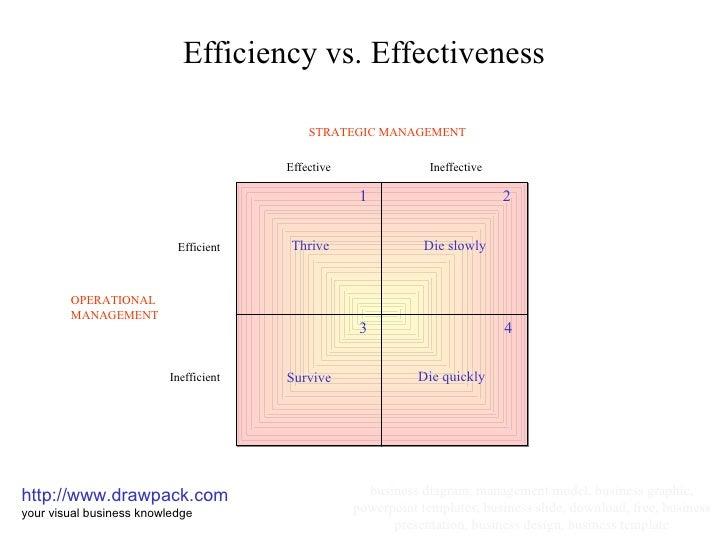 efficiency effectiveness management essays