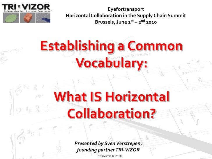 Introduction to Horizontal Collaboration (c) TRI-VIZOR 2010