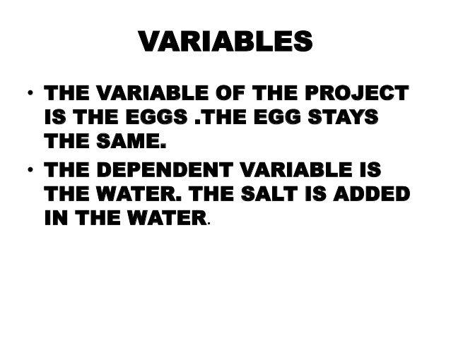 Egg Float Presentation