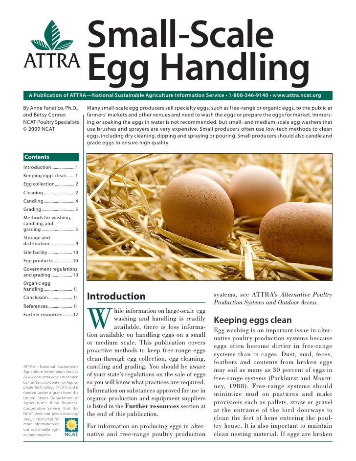 Small-Scale                                           Egg Handling   A Publication of ATTRA—National Sustainable Agricultu...