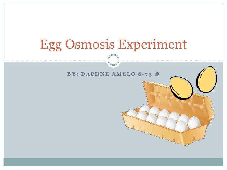osmosis egg experiment Osmosis and diffusion abstract: this lab is composed of instructor demonstrations, as well as student run experiments meant to osmosis of decalcified chicken eggs.