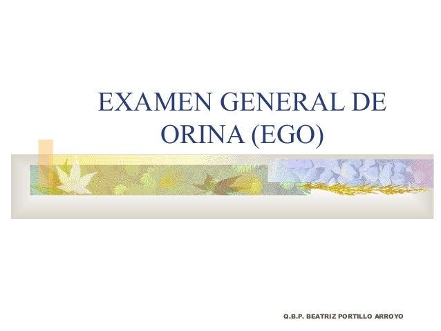 EXAMEN GENERAL DE   ORINA (EGO)          Q.B.P. BEATRIZ PORTILLO ARROYO
