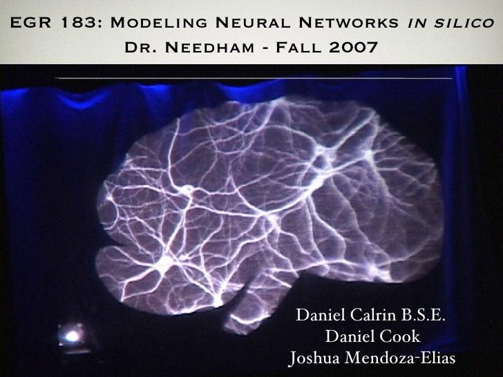 EGR 183: Modeling Neural Networks  in silico Dr. Needham - Fall 2007 Daniel Calrin B.S.E. Daniel Cook Joshua Mendoza-Elias