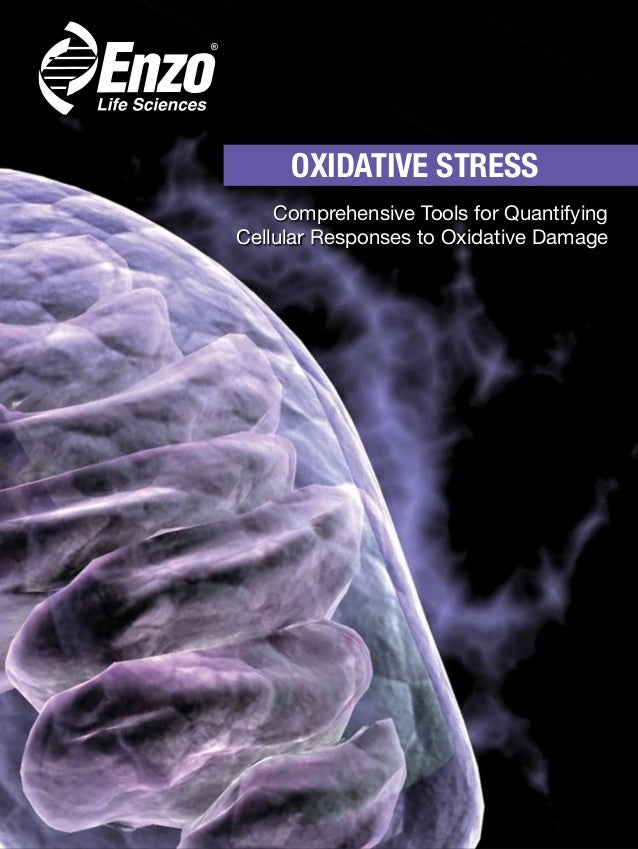 OXIDATIVE STRESS Comprehensive Tools for Quantifying Cellular Responses to Oxidative Damage