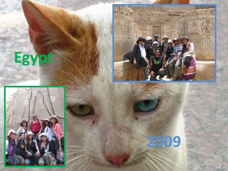 Egypt2009
