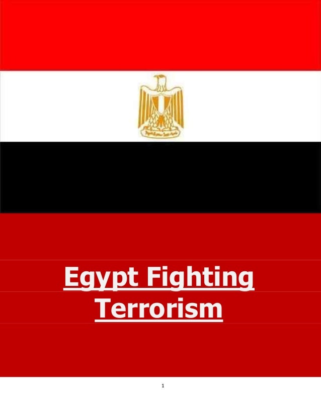 Egypt Fighting Terrorism - 2013