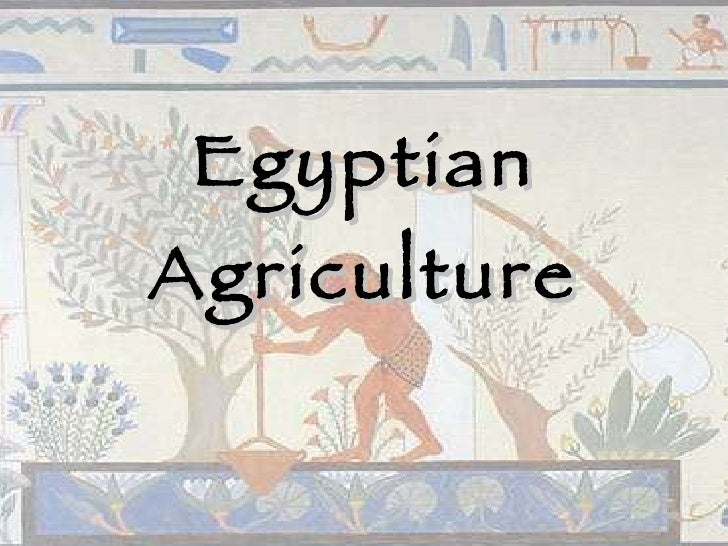 Egyptian Agriculture
