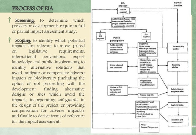 scoping and screening in environmental impact