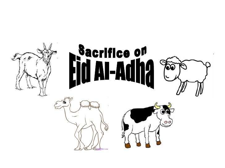 Eid Al-Adha Sacrifice on
