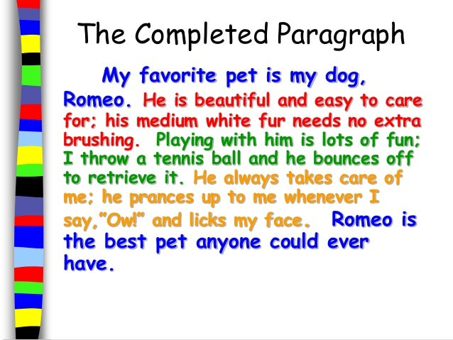 My favourite pet essay