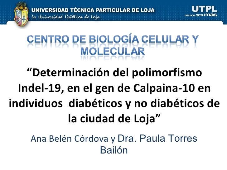 """"""" Determinación del polimorfismo Indel-19, en el gen de Calpaina-10 en individuos  diabéticos y no diabéticos de la ciudad..."""
