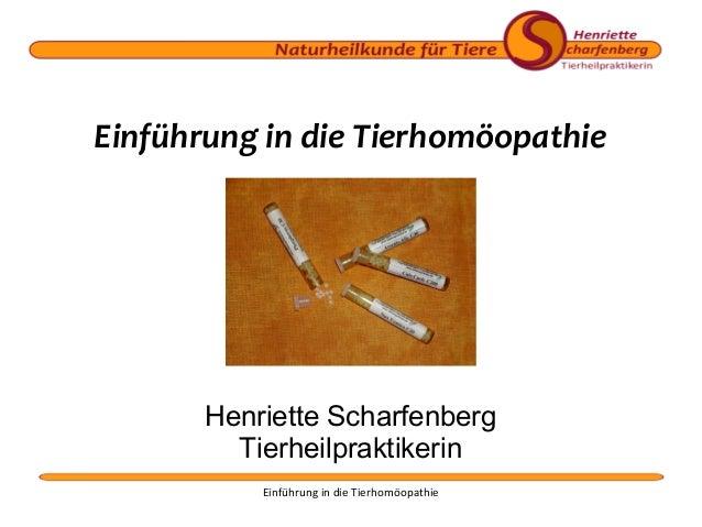 Einführung in die TierhomöopathieEinführung in die TierhomöopathieHenriette ScharfenbergTierheilpraktikerin