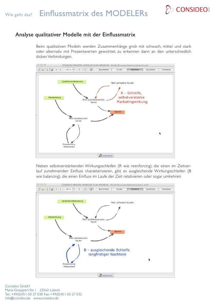 Wie geht das?         Einflussmatrix des MODELERs                                                                Analyse qu...