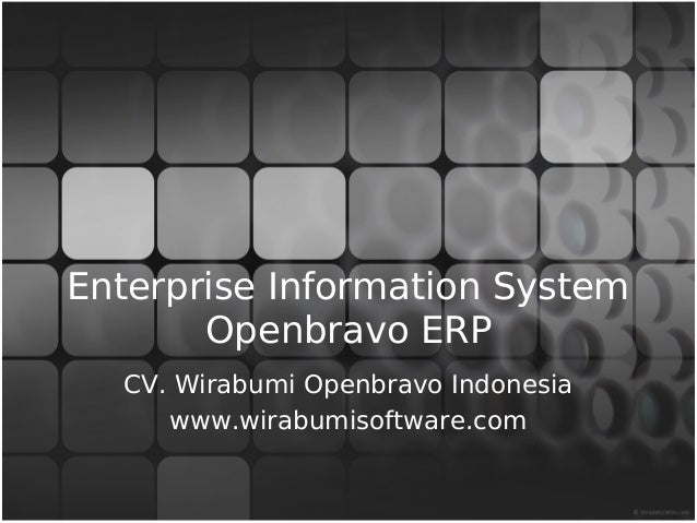 Openbravo ERP Overview