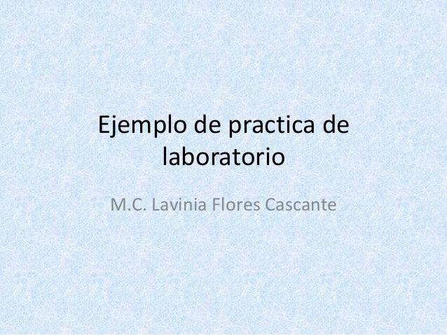 Ejemplo de practica de laboratorio M.C. Lavinia Flores Cascante