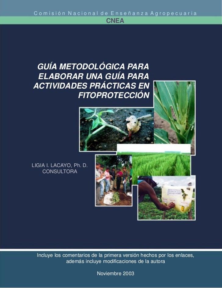 Comisión Nacional de Enseñanza Agropecuaria                                CNEA GUÍA METODOLÓGICA PARA ELABORAR UNA GUÍA P...
