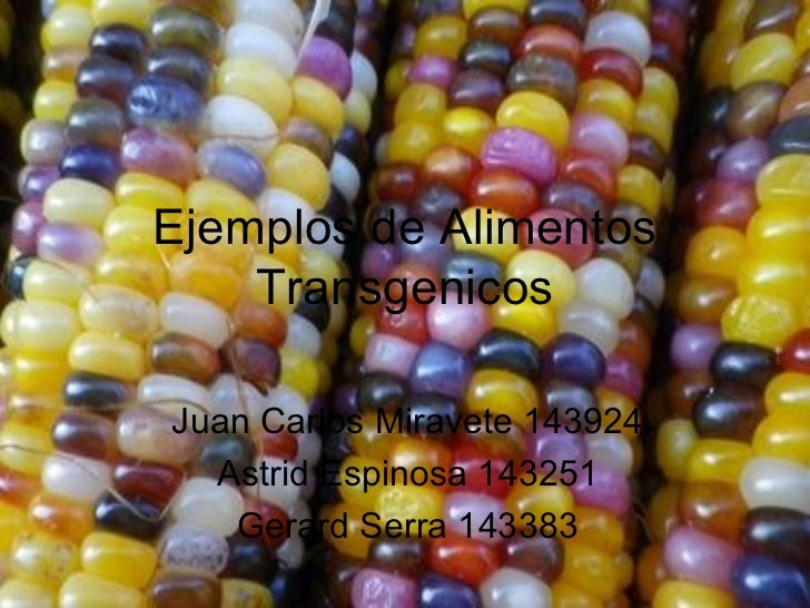 Ejemplos de Alimentos    TransgenicosJuan Carlos Miravete 143924  Astrid Espinosa 143251   Gerard Serra 143383