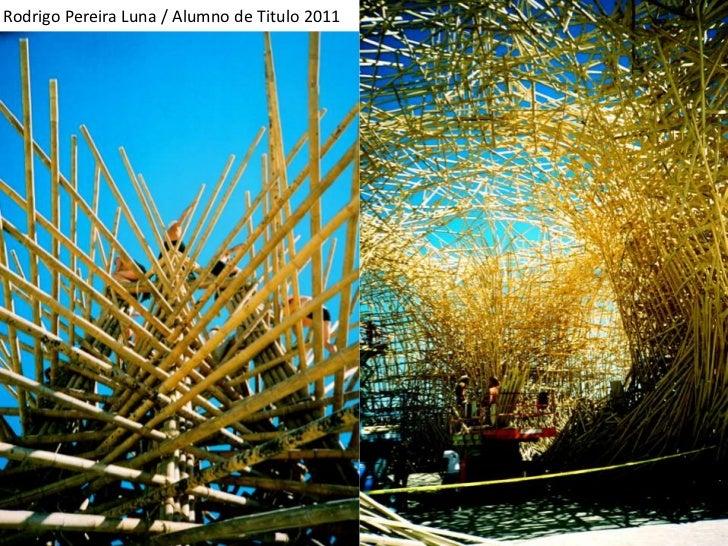 Rodrigo Pereira Luna / Alumno de Titulo 2011<br />