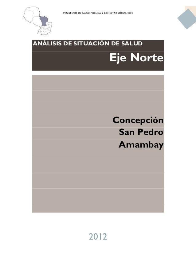 Analisis de situacion de salud, Paraguay, Eje Norte, indicadores