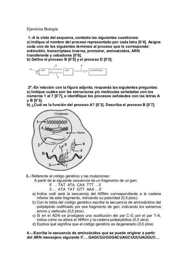 Ejercicios Biología 1.-A la vista del esquema, conteste las siguientes cuestiones: a) Indique el nombre del proceso repres...