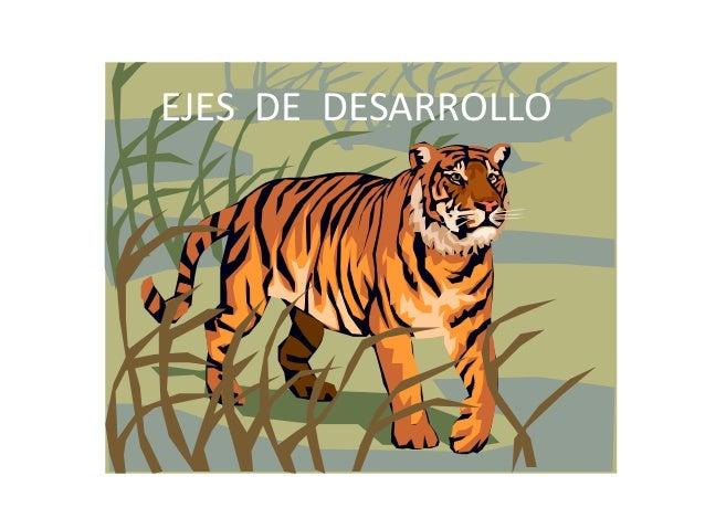 EJES DE DESARROLLO