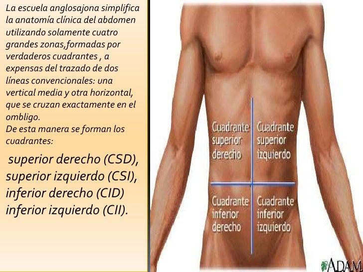 La infracción de la circulación de la sangre en sheynom el departamento de la columna vertebral