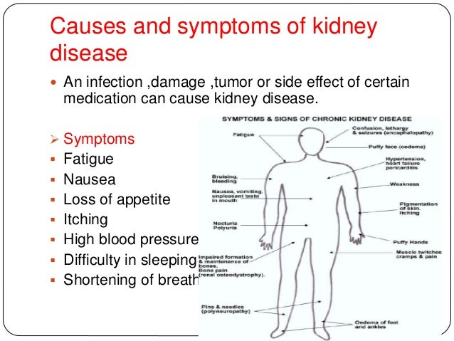 10 Diets To B Avoided N Consumed By Kidney Patients