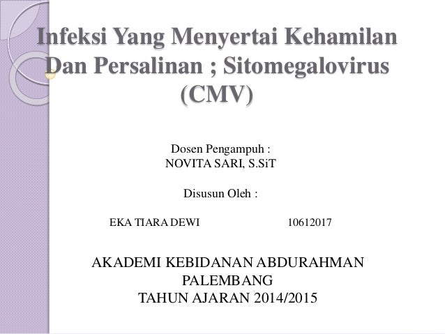 Infeksi Yang Menyertai Kehamilan Dan Persalinan ; Sitomegalovirus (CMV) AKADEMI KEBIDANAN ABDURAHMAN PALEMBANG TAHUN AJARA...