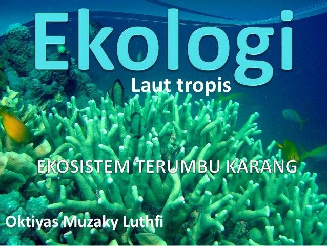 Laut tropisOktiyas Muzaky Luthfi