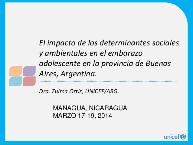 Dra. Zulma Ortiz, UNICEF/ARG. El impacto de los determinantes sociales y ambientales en el embarazo adolescente en la prov...