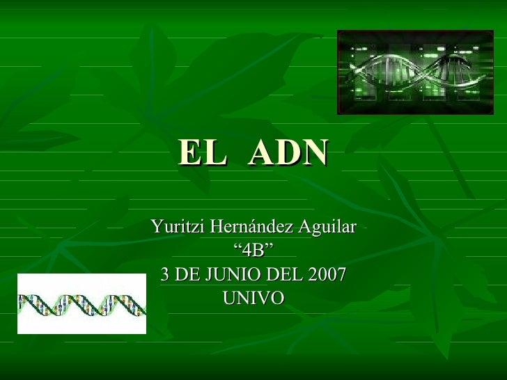 """EL  ADN Yuritzi Hernández Aguilar """" 4B"""" 3 DE JUNIO DEL 2007 UNIVO"""