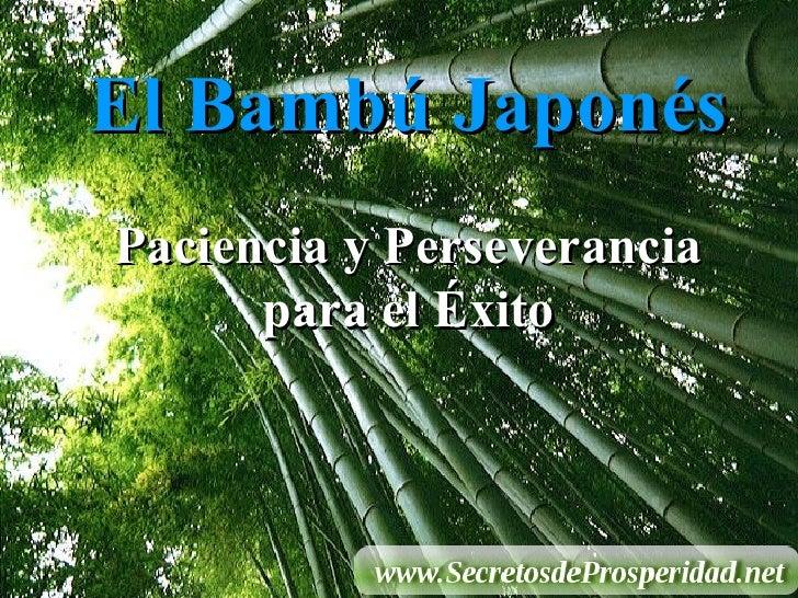 El Bambú Japonés Paciencia y Perseverancia para el Éxito