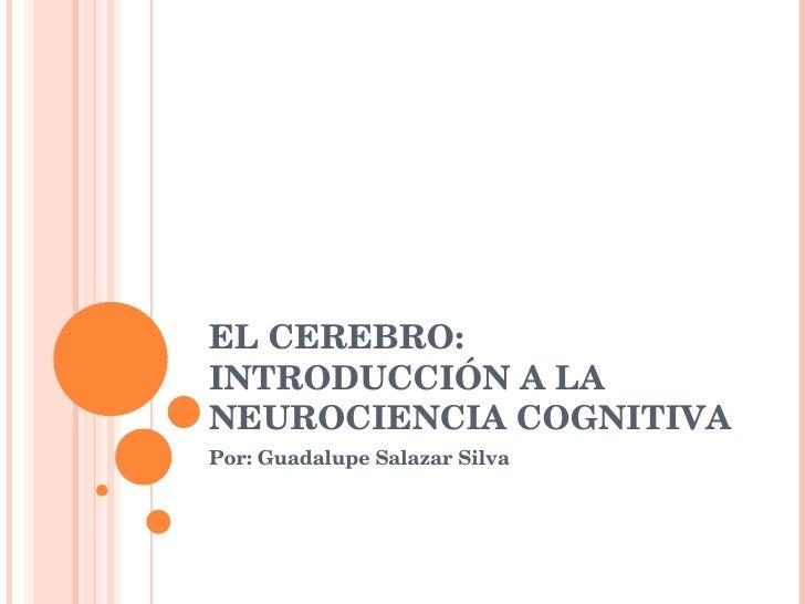 EL CEREBRO: INTRODUCCIÓN A LA NEUROCIENCIA COGNITIVA Por: Guadalupe Salazar Silva