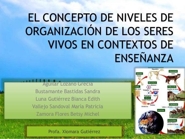 El concepto de los niveles de organizaci n de los seres for Concepto de organizacion de oficina