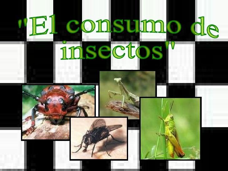 """""""El consumo de insectos"""""""