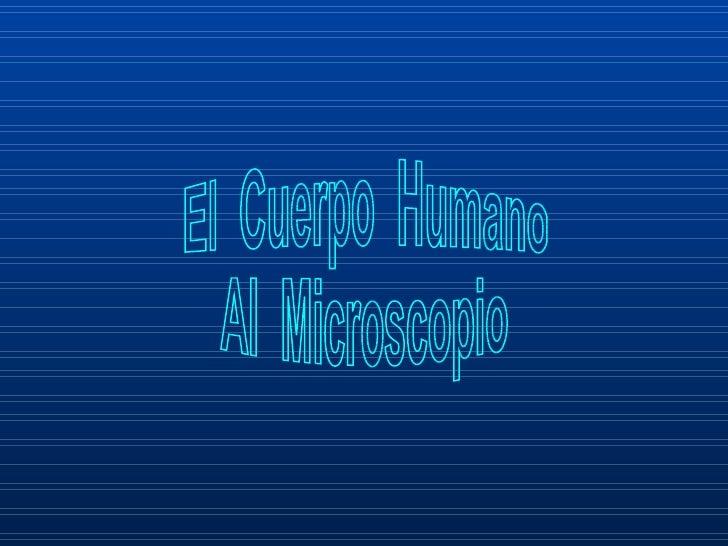 El  Cuerpo  Humano Al  Microscopio