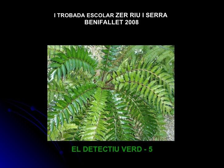 I TROBADA ESCOLAR ZER RIU I SERRA         BENIFALLET 2008          EL DETECTIU VERD - 5