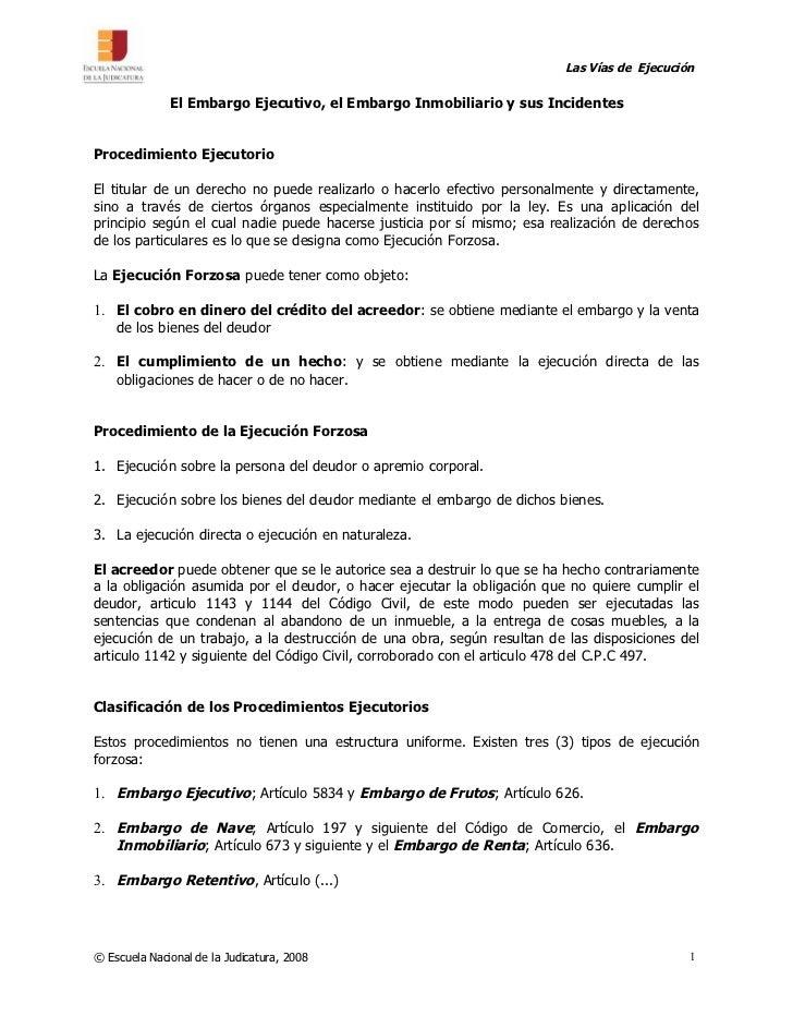 Las Vías de Ejecución                El Embargo Ejecutivo, el Embargo Inmobiliario y sus Incidentes   Procedimiento Ejecut...