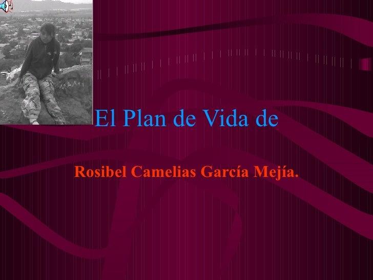 El Plan de Vida de Rosibel Camelias García Mejía.