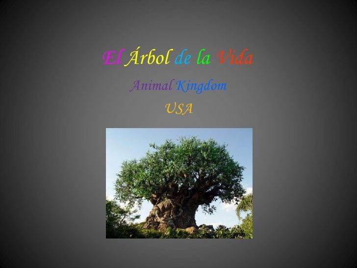 El  Árbol   de   la   Vida Animal   Kingdom USA