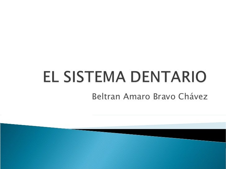 Beltran Amaro Bravo Chávez