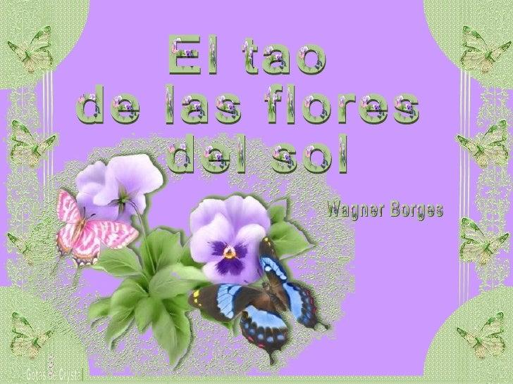 El tao  de las flores del sol Gotas de Crystal Wagner Borges