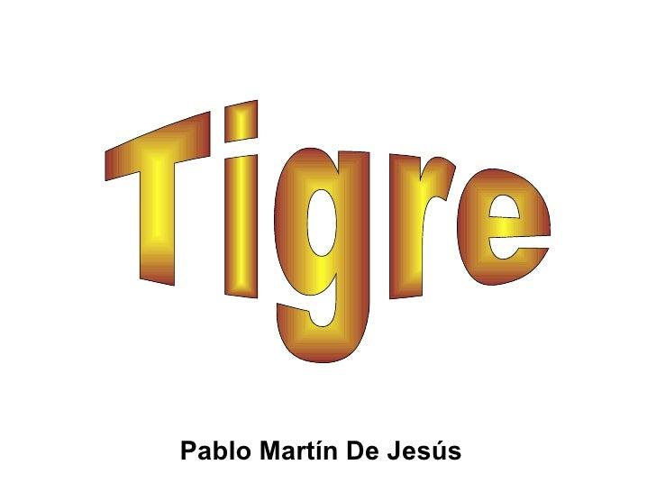 Pablo Martín De Jesús Tigre