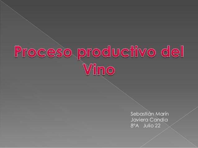 Circuito Productivo Del Vino : Elaboracion del vino