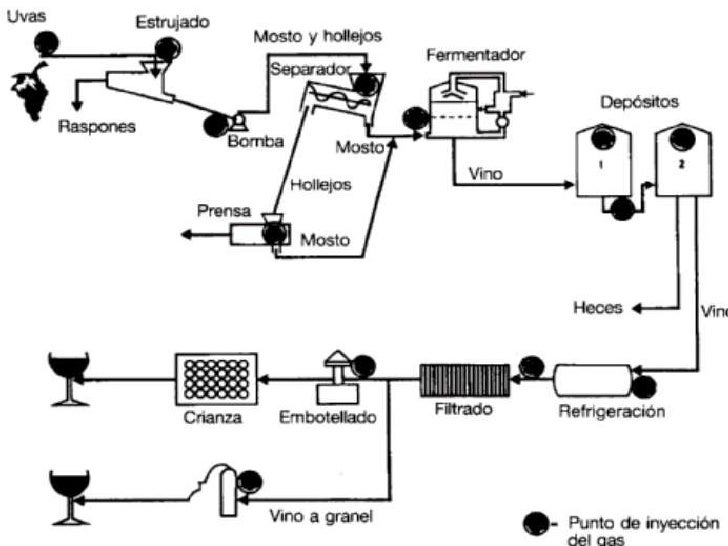 Elaboracion de Vino Casero Elaboracion Vino