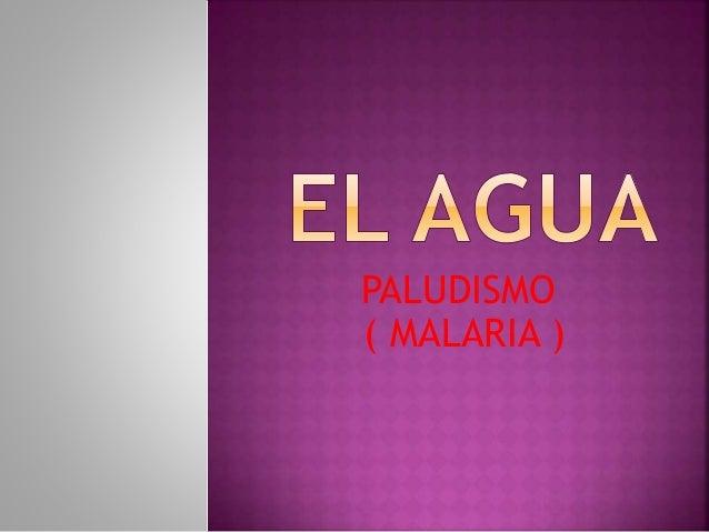 PALUDISMO  ( MALARIA )