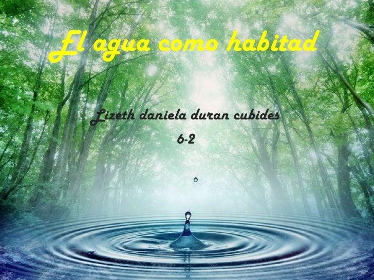El agua como habitad   Lizeth daniela duran cubides               6-2