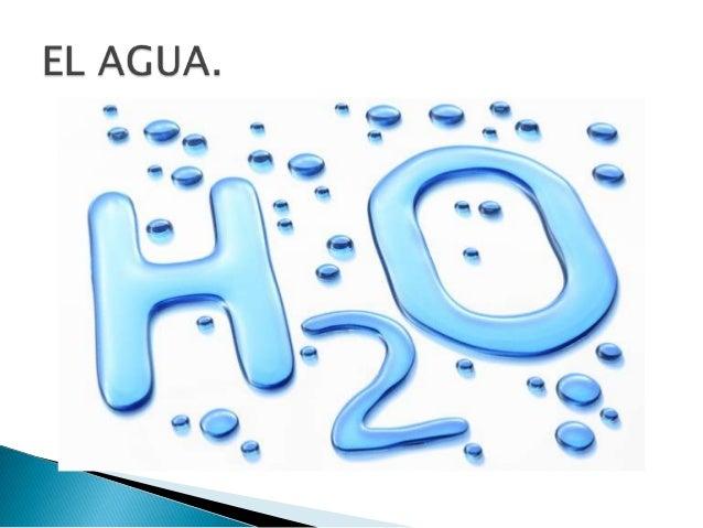 ecologia del agua: