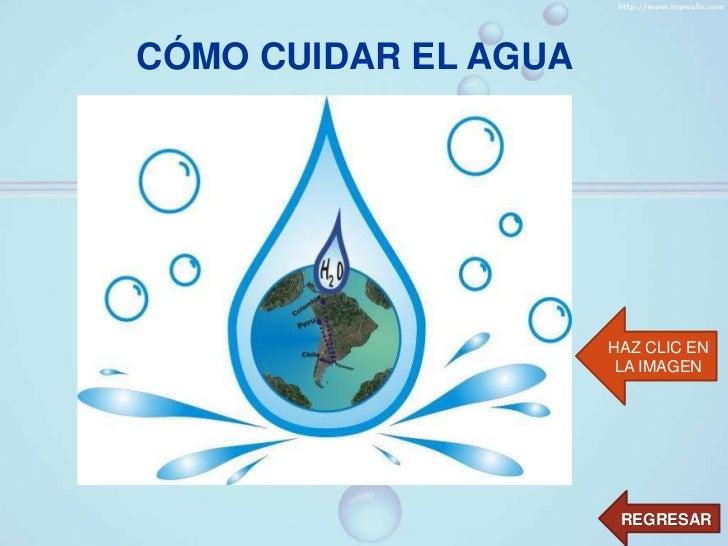 El agua liquido vital del mundo - Como cuidar las hortensias de exterior ...